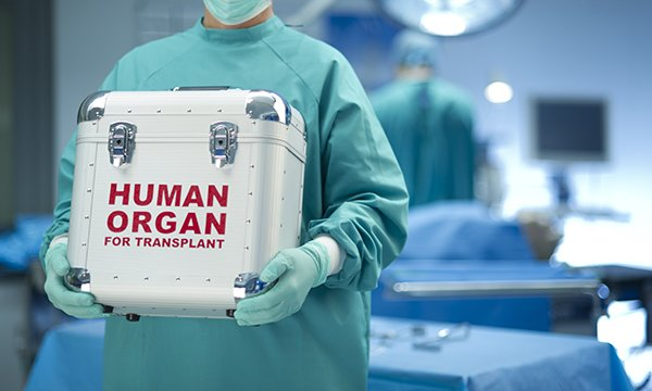 Picture shows medical person carrying human organ for transplant in box. Early engagement with specialist organ donation colleagues is vital as soon as decisions are made around end of life care in the resus room