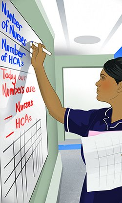 Artwork shows a nurse writing on a board listing staff numbers. NHS England is increasingly relying on support staff such as healthcare assistants and nursing associates to make up for its failure to recruit enough nurses, a report says.