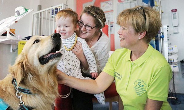 Children's therapy dogs