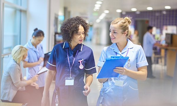 Development of approaches and legislation to optimise nurse staffing levels